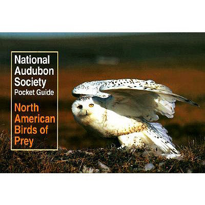 Pocket Guide to North American Birds of Prey