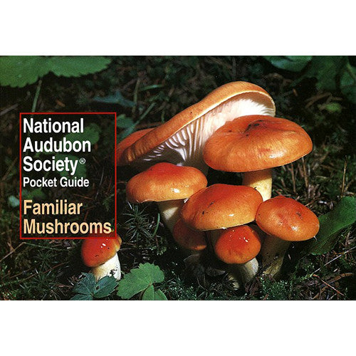 Pocket Guide to Familiar Mushrooms