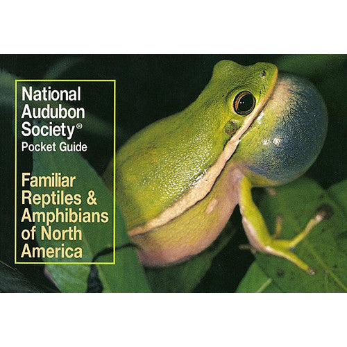 Pocket Guide to Familiar Reptiles and Amphibians