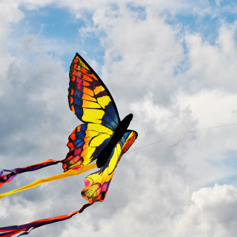 Large Swallowtail Butterfly Kite