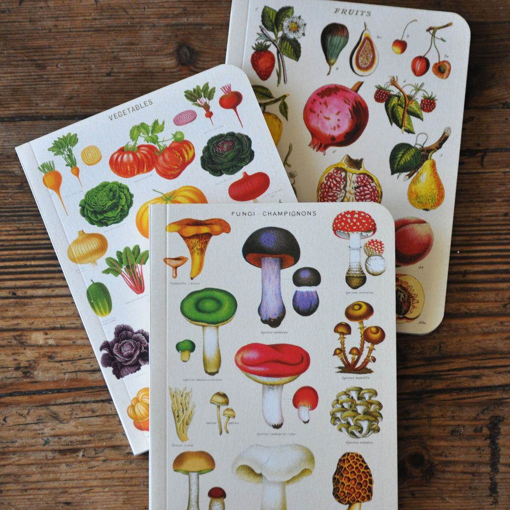 Garden Notebook Set