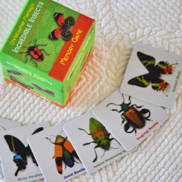 Incredible Insects Memory Game