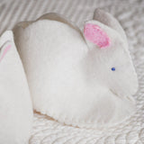 DIY Baby Booties Kit Bunny
