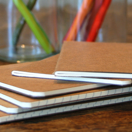 Moleskine Notebooks