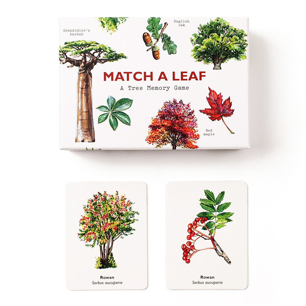 Match A Leaf A Trees Memory Game