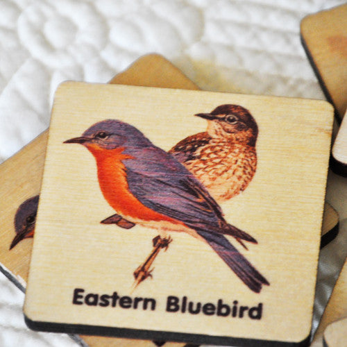 Peterson Bird Matching Game