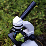 Duo-Scope Study Microscope