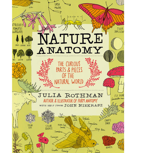 Nature Anatomy Activities for Kids