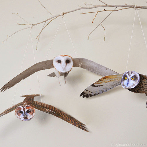 Flying Owl Mobile Kit