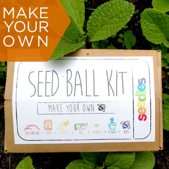 DIY Seed Balls For the Bees!