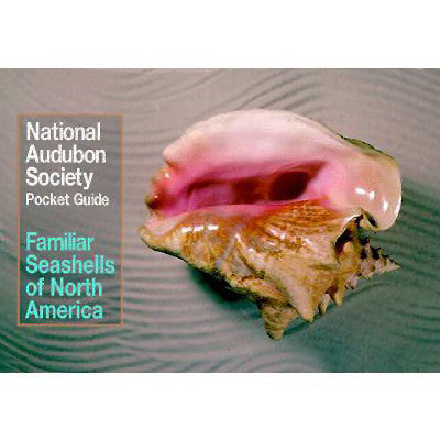 Pocket Guide to Familiar Seashells