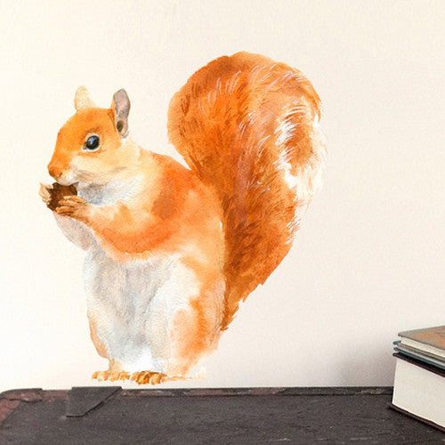 Red Squirrel Wall Decal