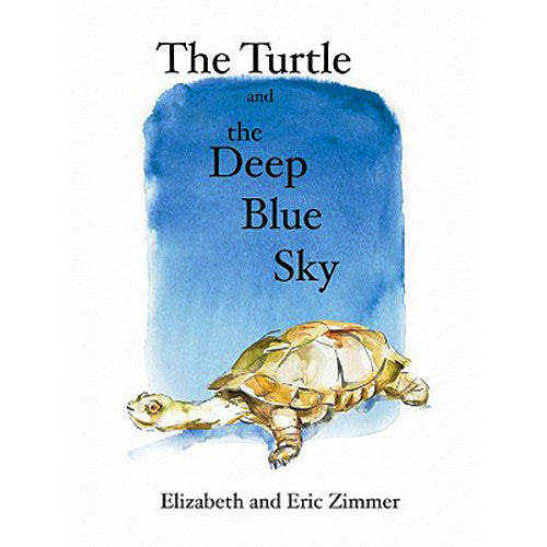 The Turtle and the Deep Blue Sky