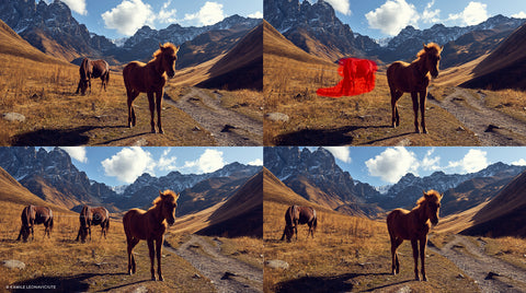 horses being duplicated in capture one