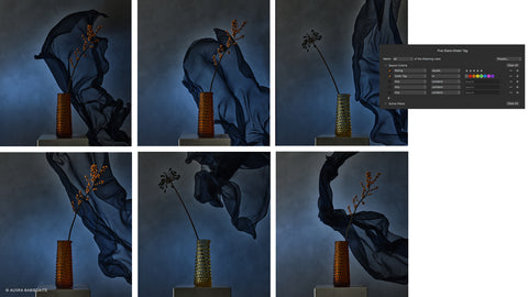 6 pictures of vases, showing the filters and smart albums feature of Capture one.