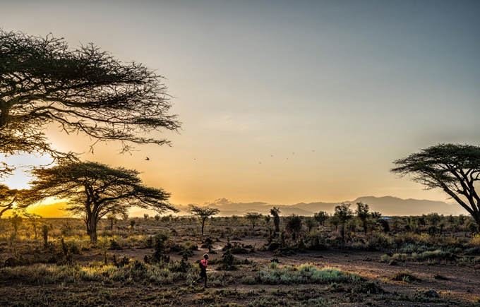 Image of African plains taken by Michael Schoenfeld