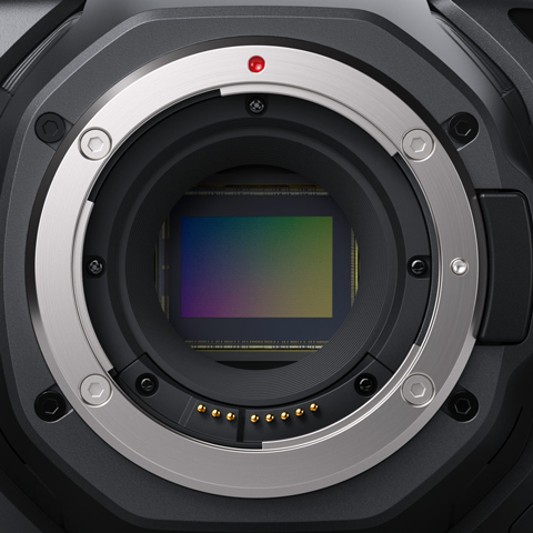 Black Magic Pocket Cinema 6K Super 35 sensor