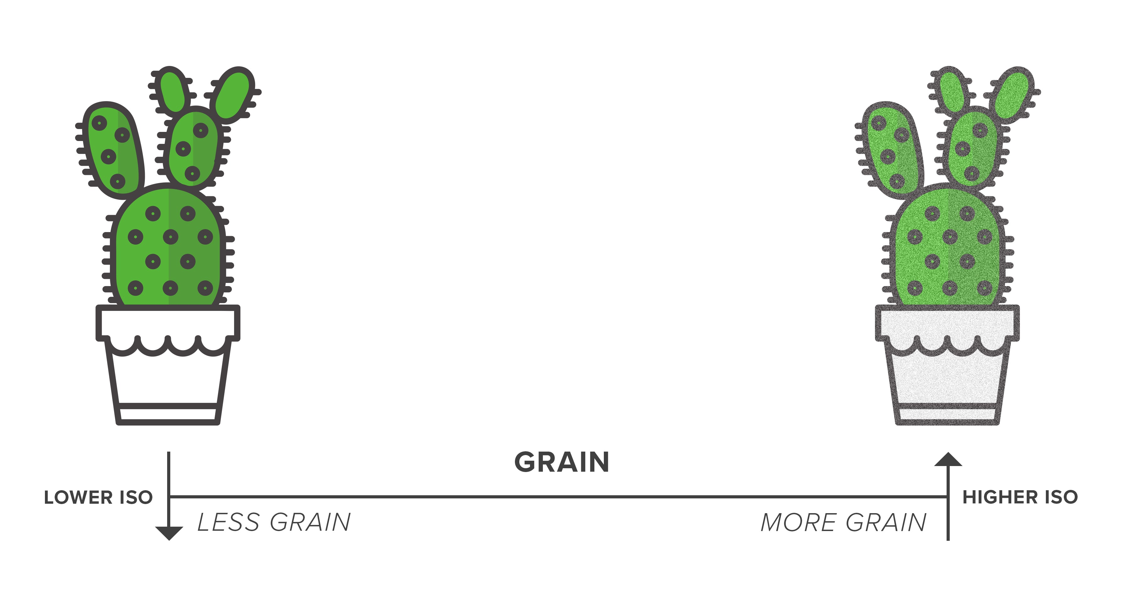 ISO and grain diagram