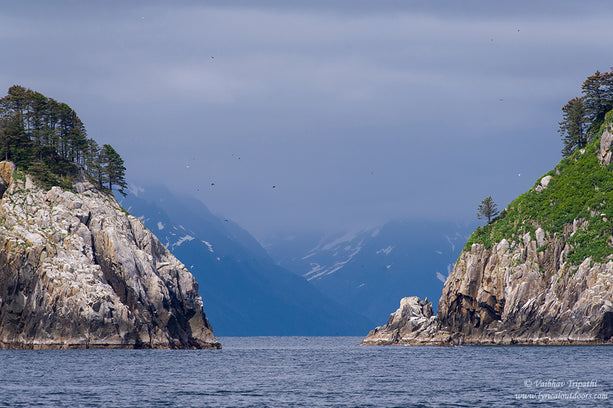 Aialik Bay, Kenai Fjords National Park, Alaska - Telephoto Landscapes by Vaibhav Tripathi