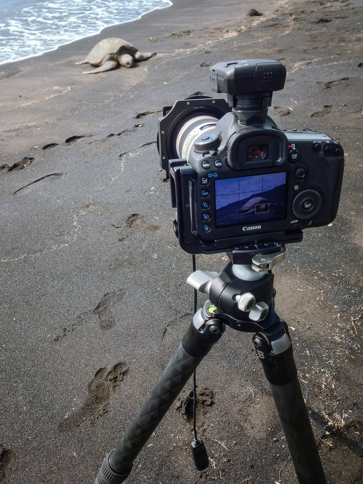 Essential Landscape Photography Gear for 2014 – Pictureline