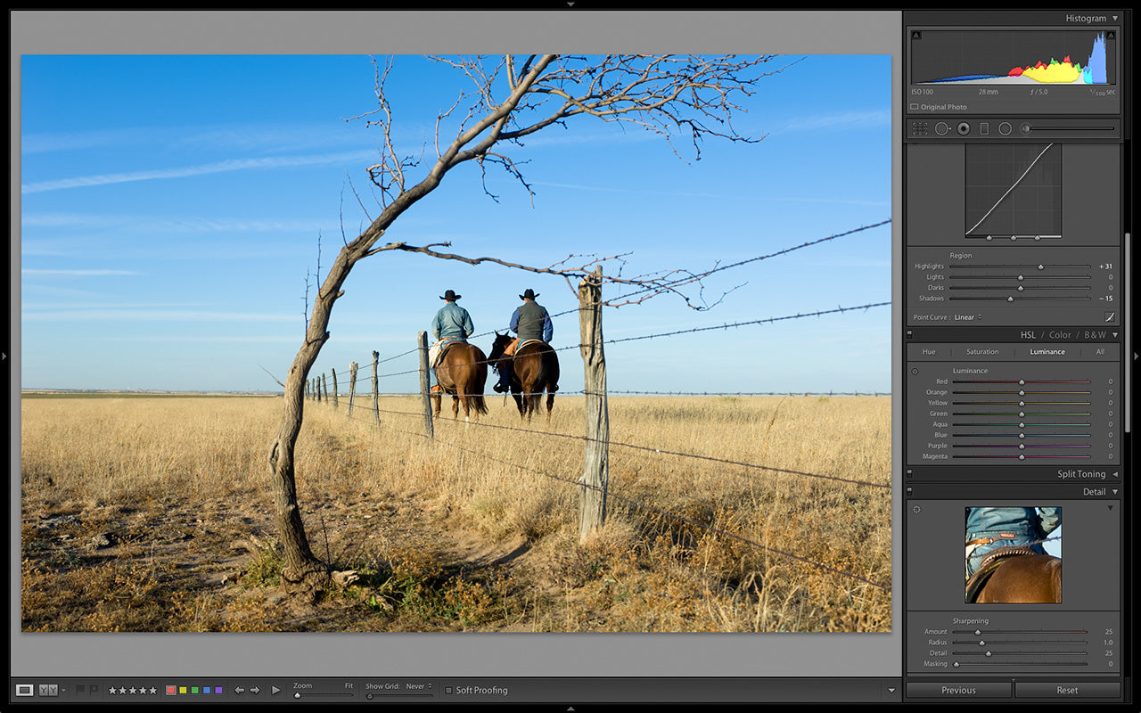 Lightroom Tone Curve Panel, Lightroom, Michael Clark