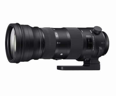Sigma 150-600mm f/5-6.3 DG OS HSM Sports Lens for Canon EF, lenses slr lenses, Sigma - Pictureline