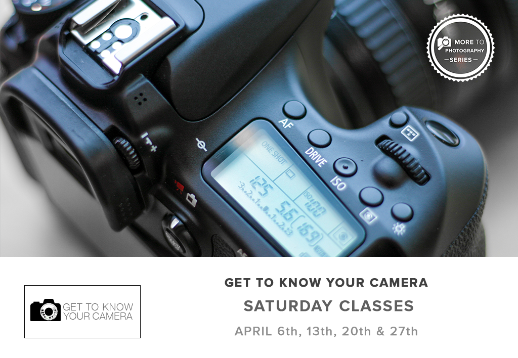 Get To Know Your Camera - Part 1 (April 2019)