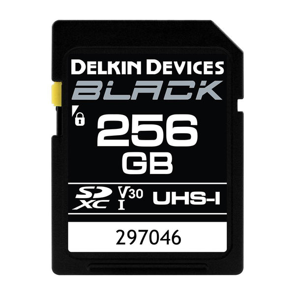 Delkin 256GB SDXC Black Memory Card