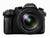Panasonic Lumix DMC-FZ2500 Digital Camera, camera point & shoot cameras, Panasonic - Pictureline  - 1