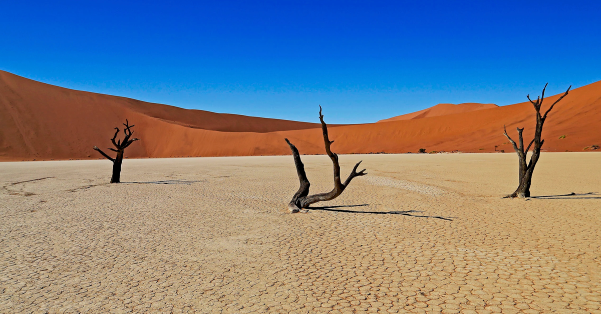Namibia Tour (May 15-30, 2020)