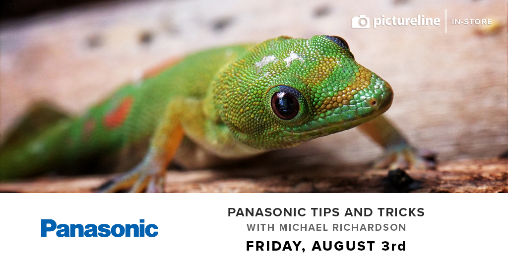 Panasonic Tips and Tricks with Michael Richardson (August 3rd, Friday)