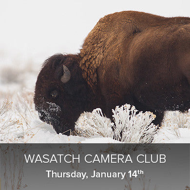 Wasatch Camera Club - First 2016 Meeting (January 14th), events - past, Pictureline - Pictureline