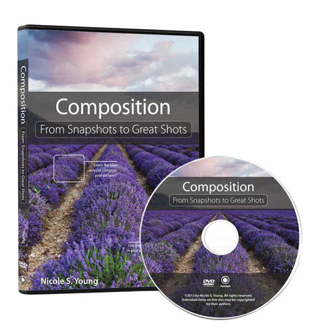 DVD: Composition: From Snapshots to Great Shots, lighting studio books & dvds, Chuck Newell - Pictureline