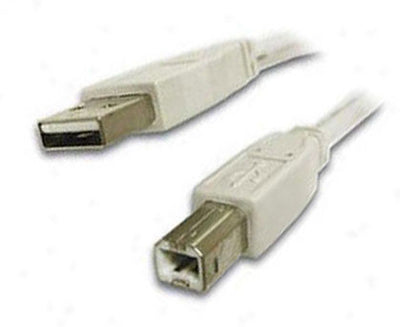 Universal USB Cable 6' Type A-B, computers cables & adapters, Universal Systems - Pictureline