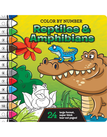 ColorbyNumber Coloring Books  Beaver Books Publishing