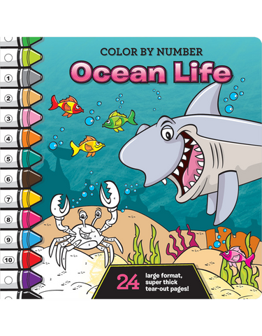 Color-by-Number Coloring Books | Beaver Books Publishing