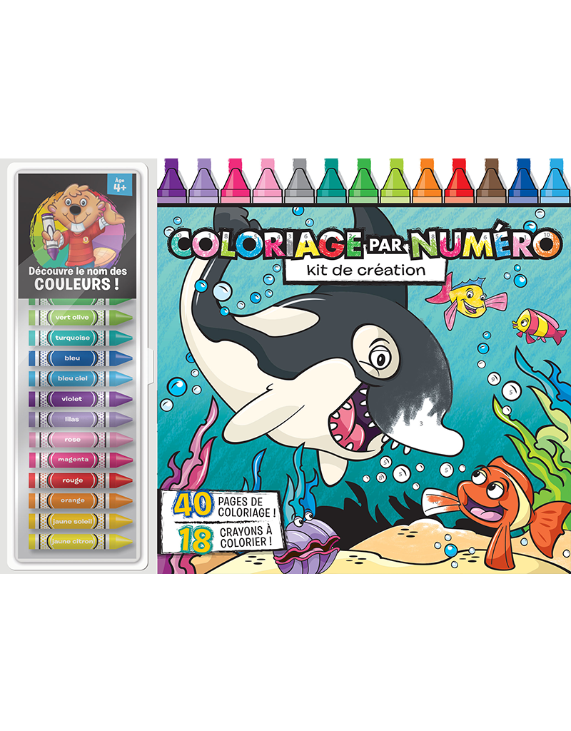 Color-by-Number Floor Pad: Creativity Kit