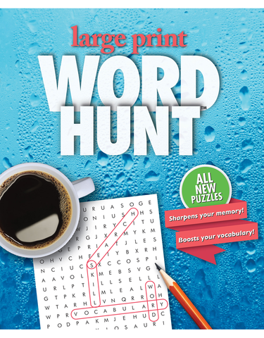 Large Print Word Hunt™ #29: Rainy Window