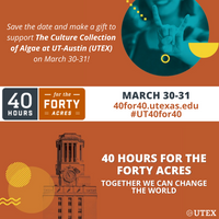 40 Hours for the Forty Acres, The University of Texas at Austin's annual day of giving, is tomorrow!