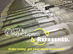 2019 UTEX Algae Express. Refreshed.