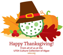 Upcoming UTEX Holiday Closure: U.S. Thanksgiving Holiday