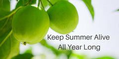 Keep summer alive all year long