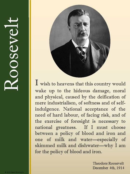 Theodore Roosevelt quote - I wish to heavens that this country would wake up.