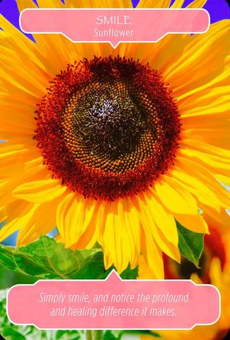 "Sunflower ~ Smile: ""Simply smile, and notice the profound and healing difference it makes."""