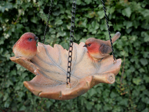 Hanging Robin Bird Feeder