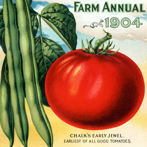 Seed Catalogs Vegetables