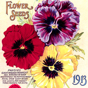 Flowers Seed Catalogs