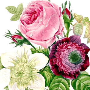 Flower Bouquets White Backgrounds