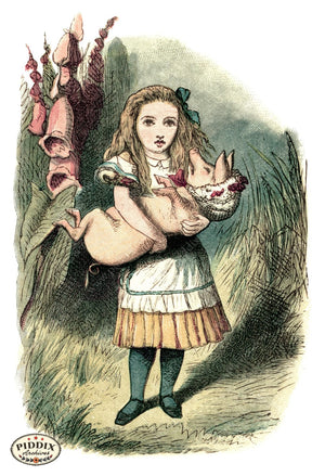 Alice In Wonderland Pdxc1191 Color Illustration