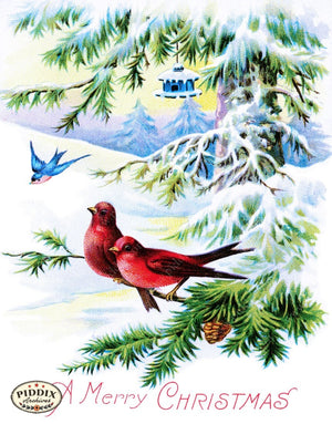 Pdxc10208 -- Christmas Birds Color Illustration